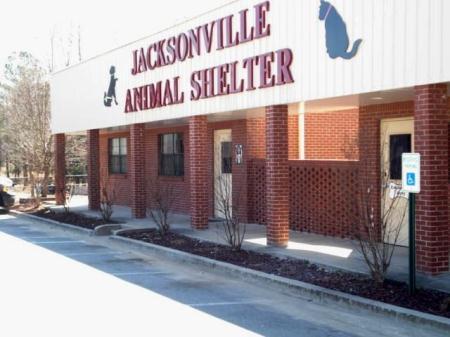 Animal Control | Jacksonville, AR - Official Website